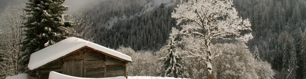 Guided private and tailor made trekking tours and walking holidays in the Alps